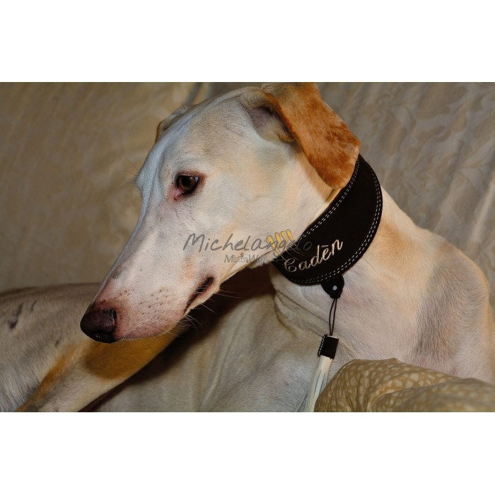 Greyhound collar with name embroidered
