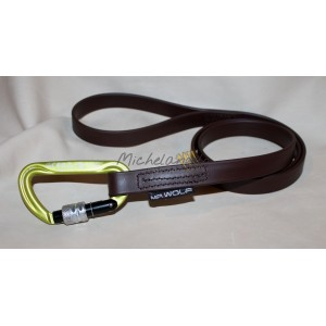 Leash in Biothane Rubicon