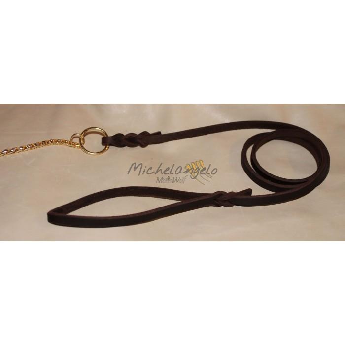 Expo leather leash