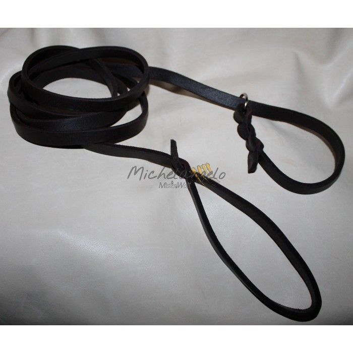leash slide