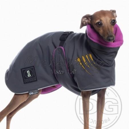 Coat for Italian greyhound