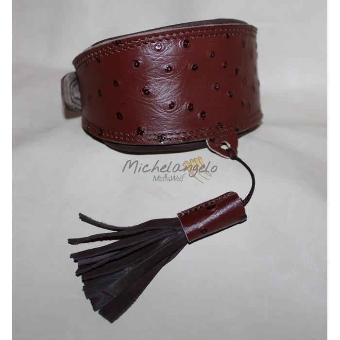 Joshua Greyhoun collar