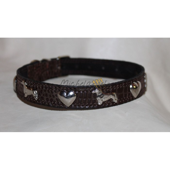 Basset Hound collar