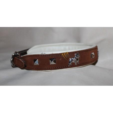 Bouledogue Francais collar
