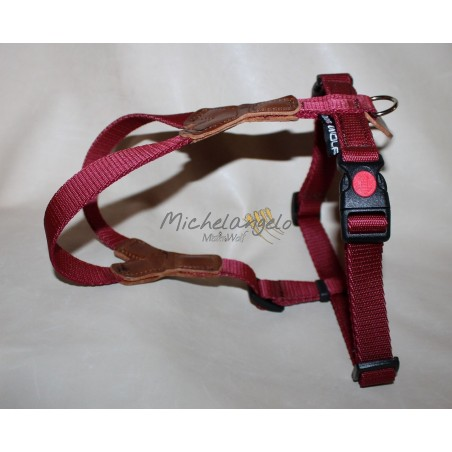 Harness for Dachshund