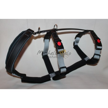 Greyhound Harness Hakuna Matata
