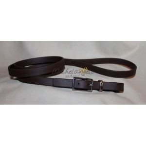leash in biothane whith buckle