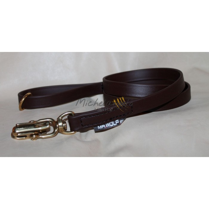 leash with quick release carabiner