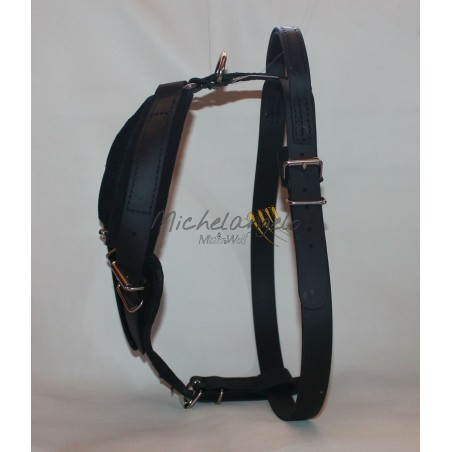 Harness for training