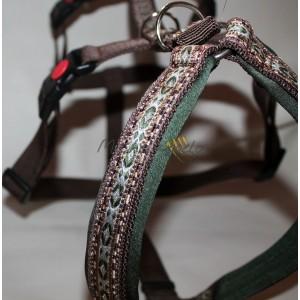 Greyhound Harness Avalon