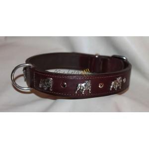English Bulldog  collar