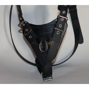 Biothane harnesses - size M