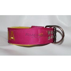 Nylon  collar whith name