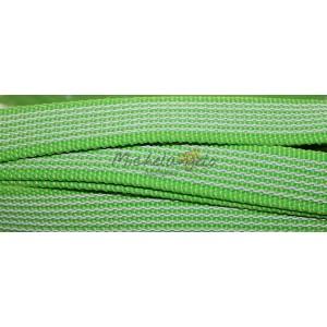 rubberized nylon  leash