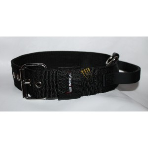 nylon collar with handle