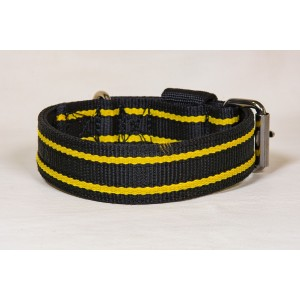Nylon collar for Staffordshire Bull Terrier