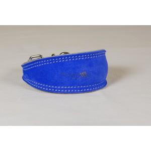Italian Greyhound Collar
