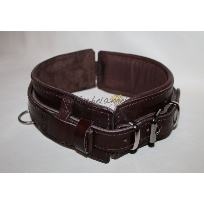 leather collar with retractable handle