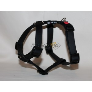 Harness for Jack Russel
