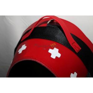 Bernese Mountain Dog harness
