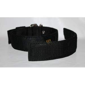 Training collar