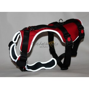 H harness for Greyhound size L