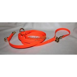Biothane  leash
