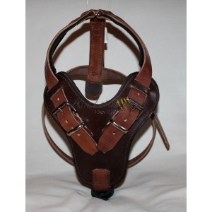 Barry Bridge leather harness