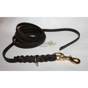 Long leash in braided...