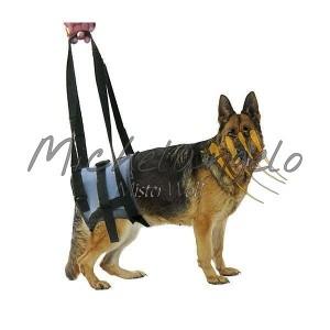 Pettorina per cani disabili
