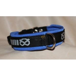 Staffordshire Bull Terrier collar whit Neoprene
