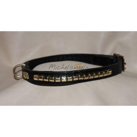 Staffordshire Bull Terrier collar