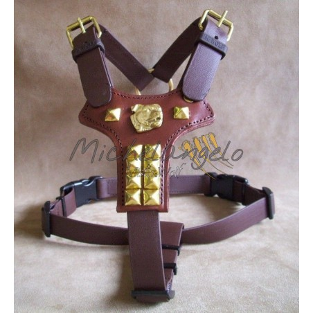 Harness for Staffordshire Bull Terrier in Biothane