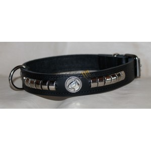 Leather collar for Bull Terrier