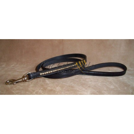 Show Leash  for  Staffordshire  Bull  Terrier
