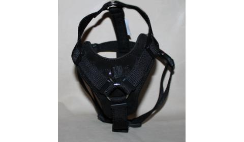 nylon and biothane  harnesses