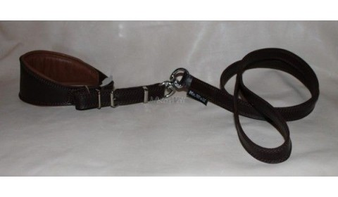 Collar and leash for Greyhounds without carabiner