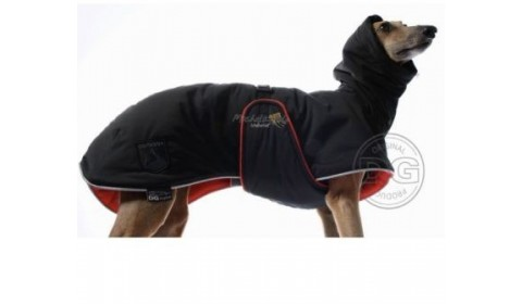coats for greyhound