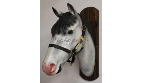 biothane halter for horse